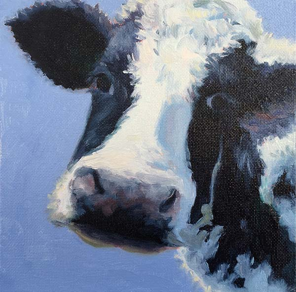 Strike A Pose, Cow painting, Art, Oil painting, animal painting, cheryldavisart.com, Cheryl Davis web